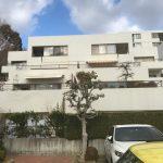 専用庭付の戸建の様なマンション